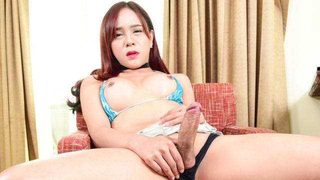 Thai Tranny Plam's Bambino-jizz-shotgun Explodes
